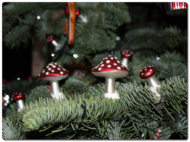 chatsworth16-tumnus-tree-toadstools
