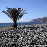Einsamer Strand, La Palma