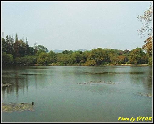 杭州 西湖 (其他景點) - 441 (西湖小瀛洲)