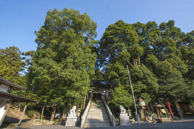 aekuni_shrine-12