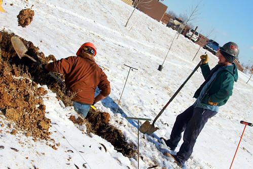 Digging for Holidog's missing bones
