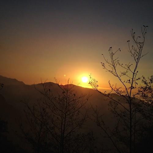 溪頭自然教育園區 uploaded:by=flickrmobile flickriosapp:filter=nofilter