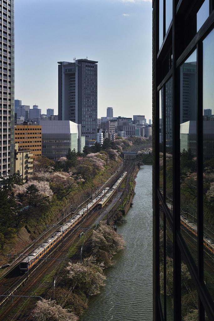 飯田橋の桜と電車