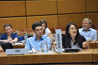 University of Vienna - Security Council Simulation