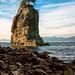Siwash Rock by Bobby Palosaari