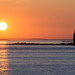 Morning Glory by rpaulpa1