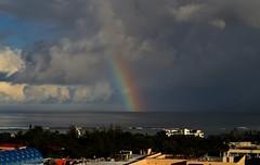 A Fine Rainbow