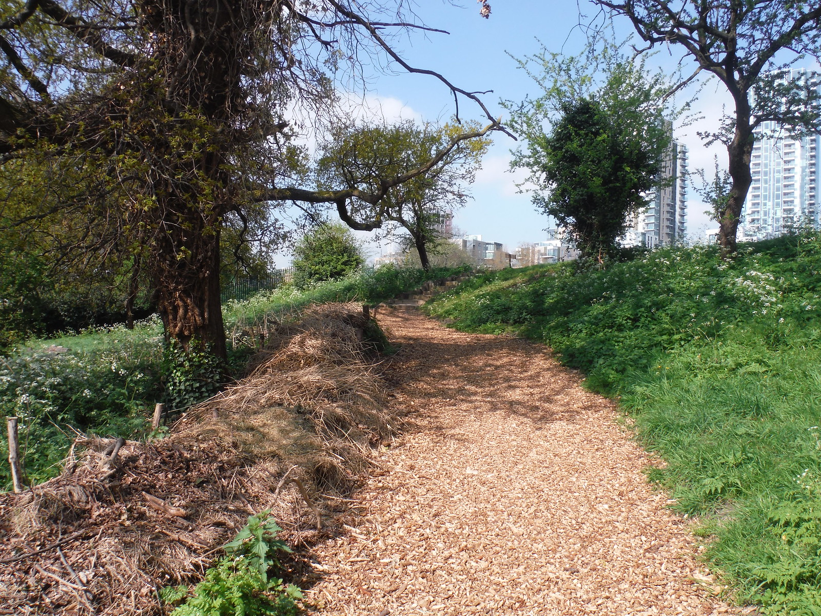 Woodland Trail (II), Woodberry Wetlands SWC Short Walk 26 - Woodberry Wetlands (Stoke Newington Reservoirs)