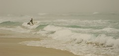 Intrepid surfer enters the waves of the pale green Pacific Ocean, in hopes of riding the surf, surfboard, wetsuit, foggy day, Asilomar, state beach, California, USA