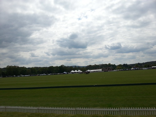 St regis polo cowdray park