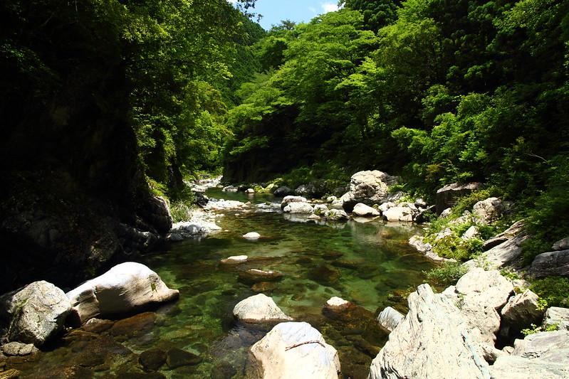 IMG_8213_6-16 Ikegawa Wandering