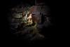 Eingang zum Dungeon by TiEx_Bilder
