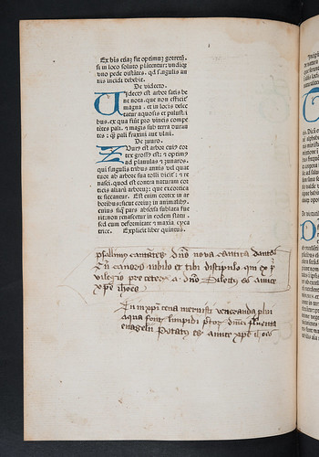 Manuscript annotations in Crescentiis, Petrus de: Ruralia commoda