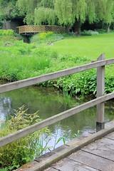 Gooderstone Water Gardens 01-06-2013