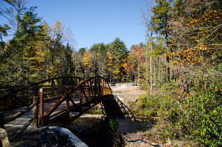 New Pedestrian Bridge at Dupont Forest