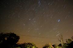Norfolk Stars