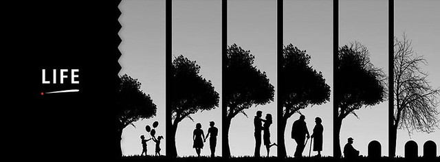 Stages Of Life Facebook Cover Photo