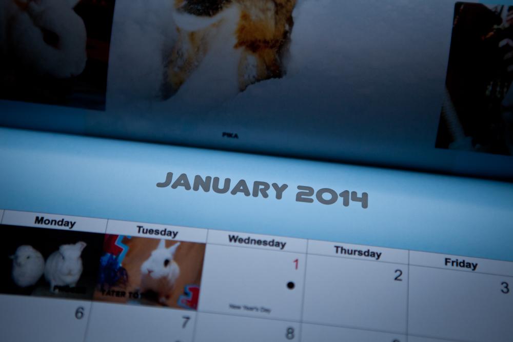 Bunspace Calendar 2014