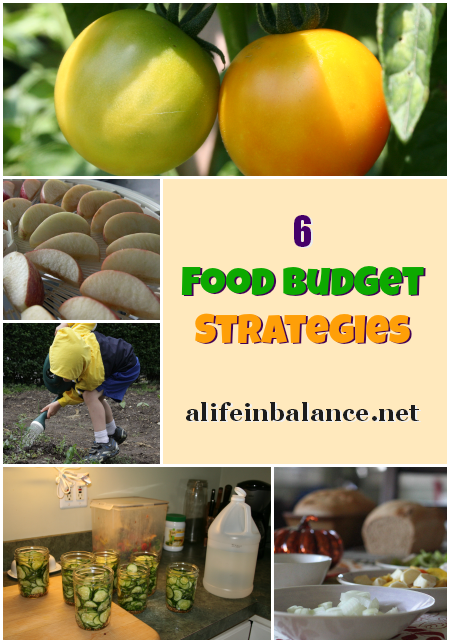 6 Food Budget Strategies for a Large Family