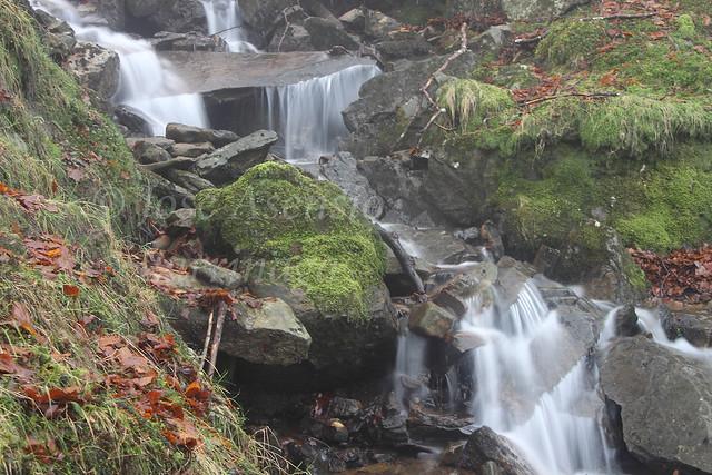 Parque Natural de Gorbeia/Gorbea #DePaseoConLarri #Photography 2138