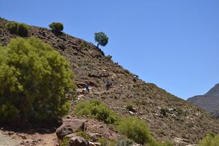 Lesotho Malealea 18 copyright Alexander G. Wiggert