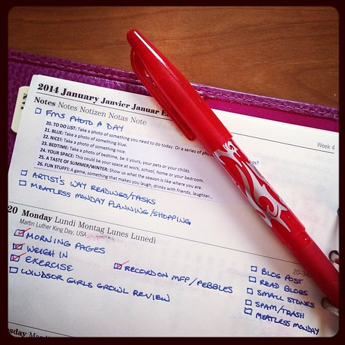 #fmsphotoaday January 20 - To Do List #filofax