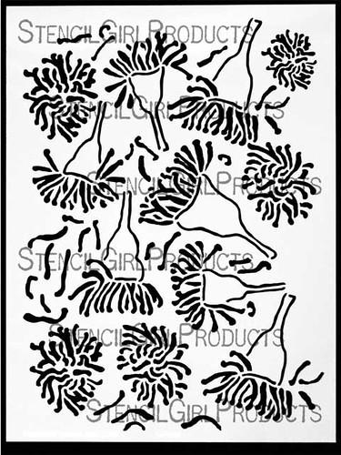 eucalyptus blooms