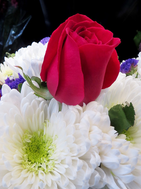 Red Roses and White Daisies Flower Bouquet