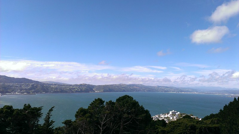 View on Wellington from Mount Victoria