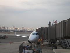airline, aviation, airliner, airplane, airport, vehicle, transport, jet bridge, infrastructure,
