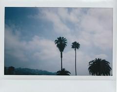 Los Angeles Instax
