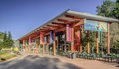 Turtle Bay Visitor Center and Museum :: #beautiful #wood #glass #design #bcj #bohlin #cywinski #jackson #architecture #redding #california #turtlebay #museum #visitor #center #blue #sky #trees #landscape #roof #shade #summer #sundial