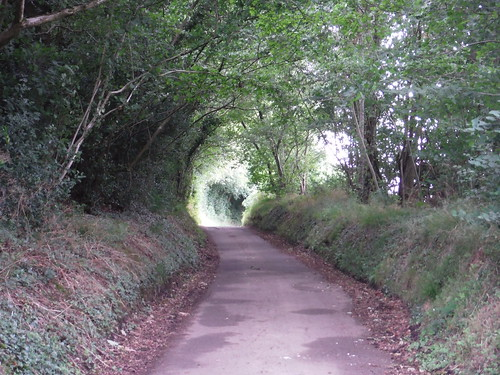 Pigtrough Lane, a typical bit of road walking