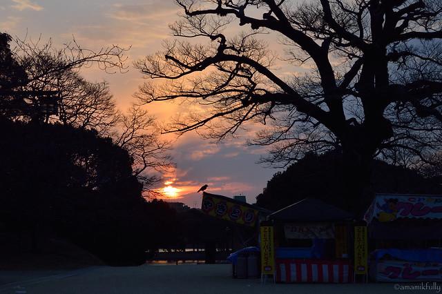夕暮れの舞鶴公園