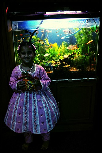 Marziyas Fish Tank.. by firoze shakir photographerno1