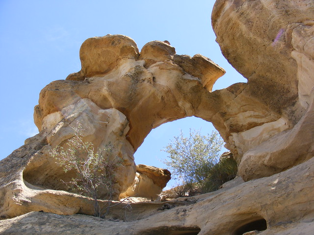 New Mexico Natural Arch NM-361 Hoot Owl Canyon Arch