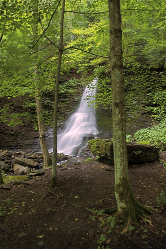 favorite waterfall ultragreen bucktailfalls spaffordvalley