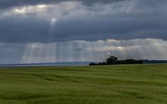 Sunrays breaking through clouds; Durchbrechende Sonnenstrahlen (16:10)