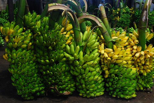 bananas 1, Colombo