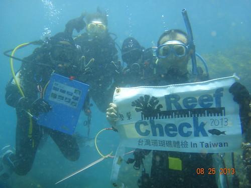 台東基翬珊瑚體檢行動