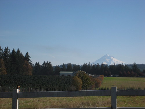 Mount Hood from Judd Road