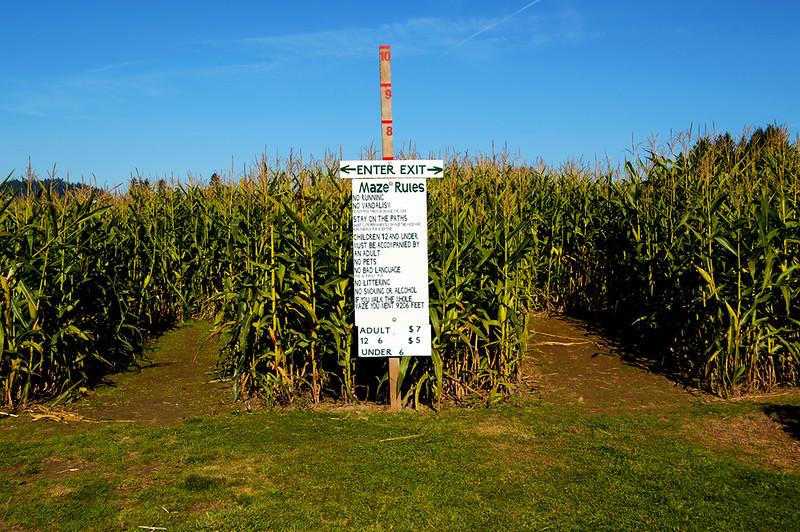 Corn Maze Sign