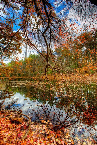 reflection fall colors landscape woods massachusetts newengland foliage hdr southboro stasburdan