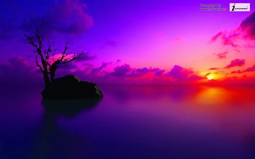 Hd Wallpapers Purple Desktop Nature Sunset Wallpaper
