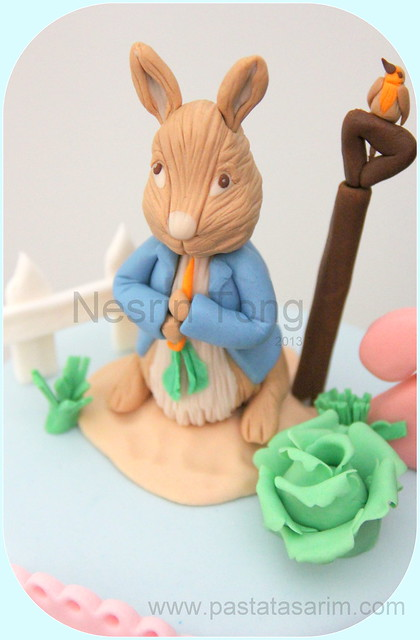 peter rabit hand made sugarpaste figurines