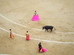 temple(0.0), tradition(0.0), cattle-like mammal(1.0), bull(1.0), sports(1.0), bullring(1.0), performing arts(1.0), matador(1.0), performance(1.0), bullfighting(1.0),