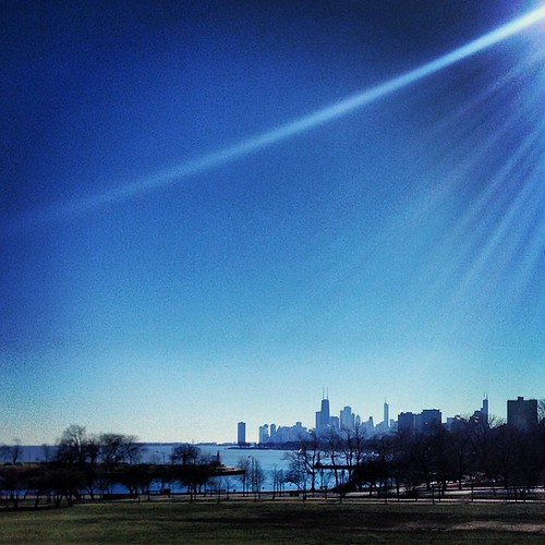View of Chicago skyline from Cricket Hill #latergram #seenonmyrun