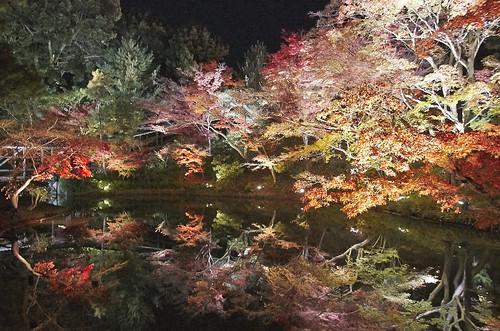 【写真】紅葉 : 高台寺