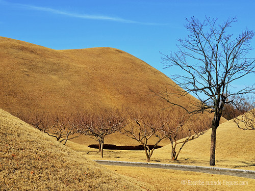 Hoy el aspecto exterior de las tumbas goza de una integración total con su entorno