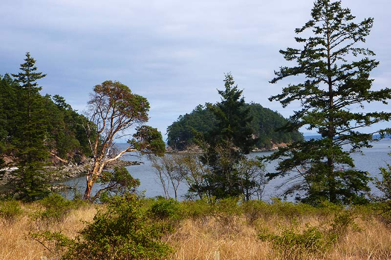 Bennett Bay in Gulf Island National Park, Mayne Island, British Columbia